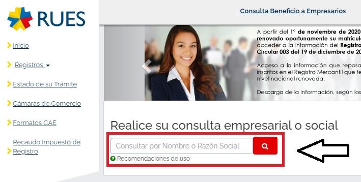 Consulta de Empresas