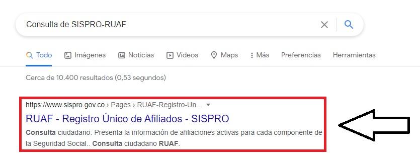 Consulta de SISPRO-RUAF